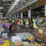 Fruit and Vegetable trade endures at Brisbane Produce Market